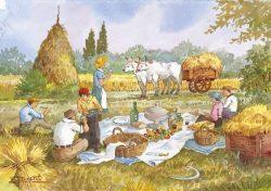 """17 Vita Rurale - Gioia e serenità durante il """"vero pranzo di lavoro"""""""