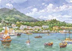 04 Isola d' Ischia - Casamicciola Terme: panorama, il porto