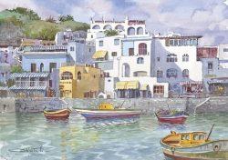 05 Isola d' Ischia - Sant' Angelo: il porto dei pescatori