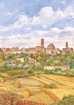 06 Volterra - Panorama dai campi di grano