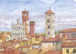 7 Lucca