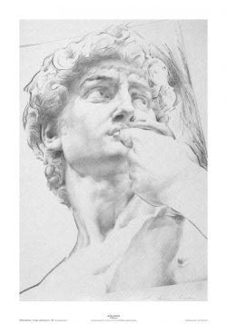 Poster 03 Omaggio a Michelangelo: Volto del David