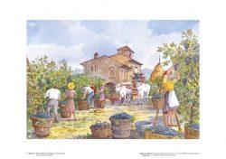 Poster 05 Vita Rurale: Raccolta dell'uva (la vendemmia)