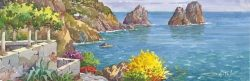 SL 01 Capri - L'isola e i faraglioni