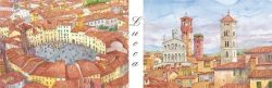 SL 03 Lucca - Piazza Anfiteatro e Panorama